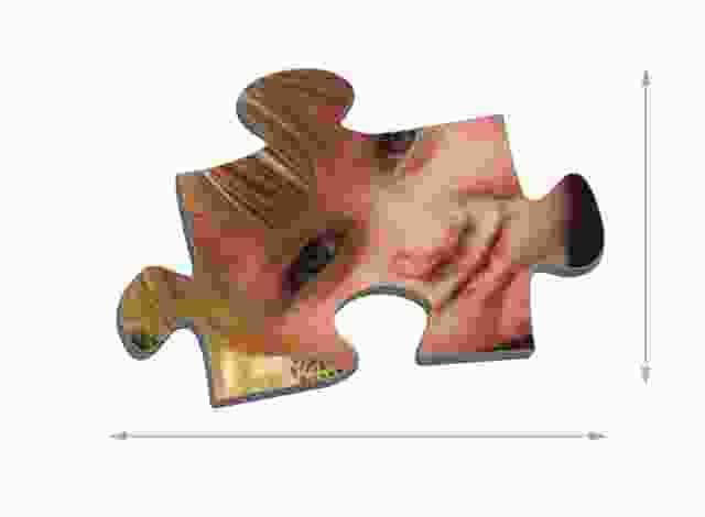 Dimensioni die tasselli del puzzle 1000